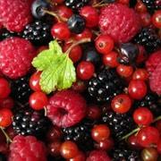 Piccoli frutti: scheda colturale